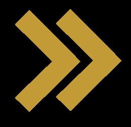 logo-luca-domeniconi-vettoriale